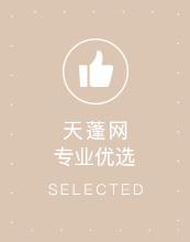 天蓬网专业优选